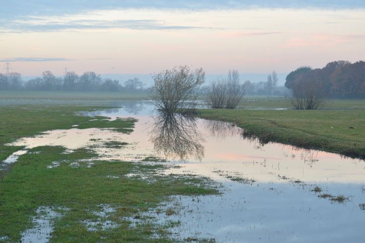 Floodplain Image