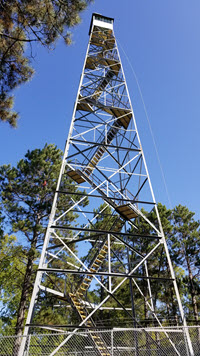 Fire Tower-web